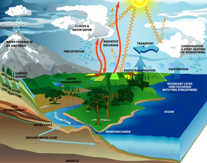 چرخه آب | The Water Cycle